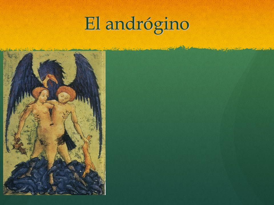 El andrógino