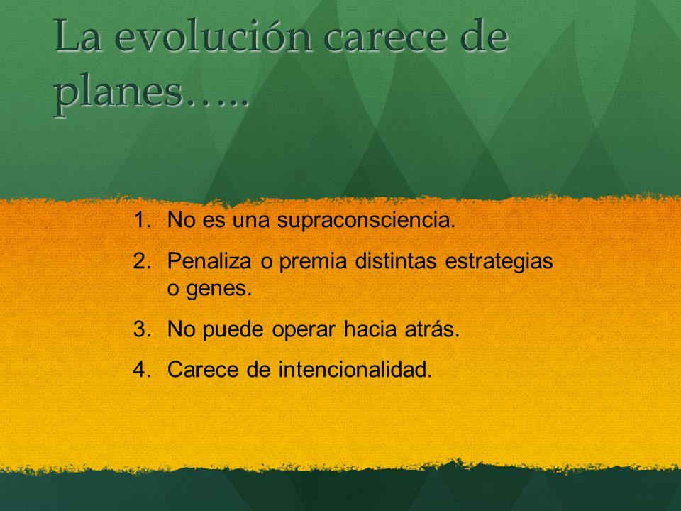 La evolución carece de planes…..