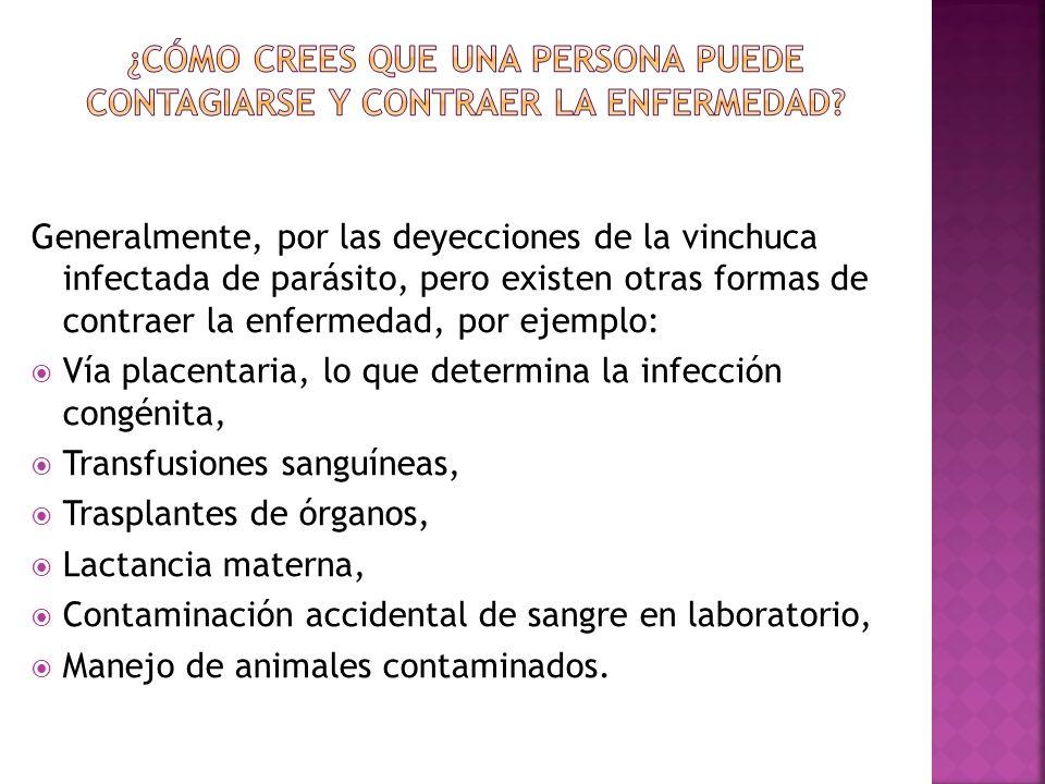 ¿Cómo crees que una persona puede contagiarse y contraer la enfermedad