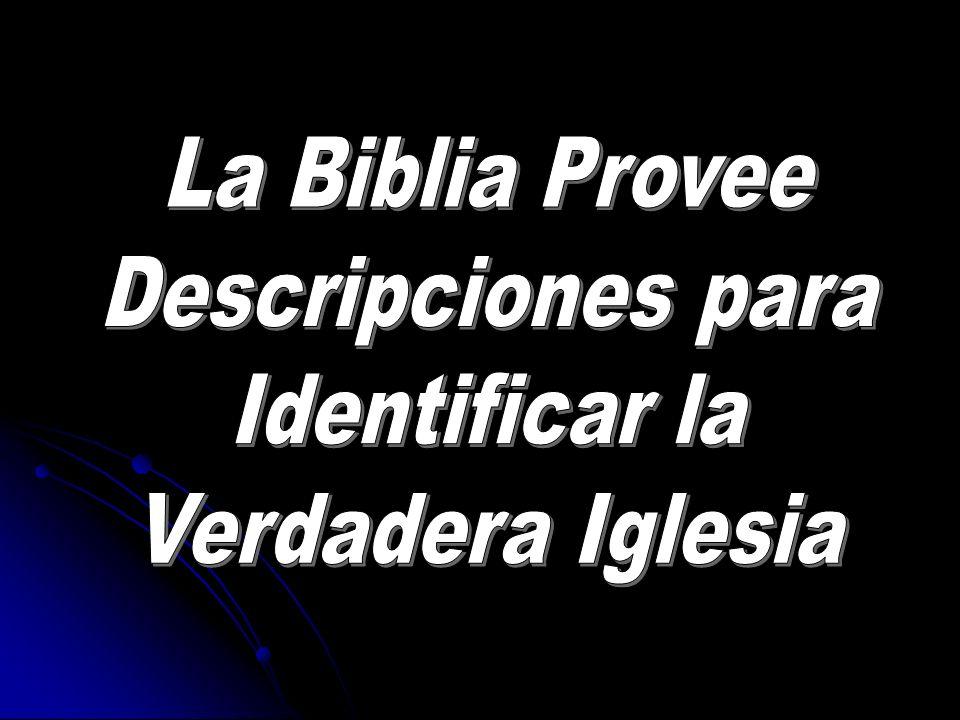 La Biblia Provee Descripciones para Identificar la Verdadera Iglesia