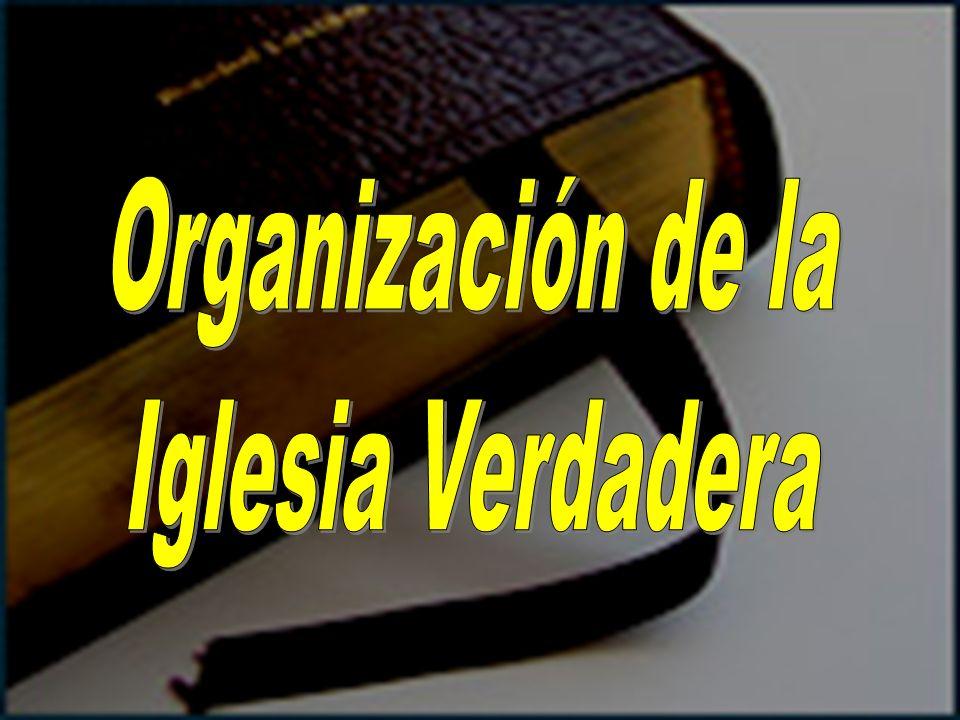 Organización de la Iglesia Verdadera