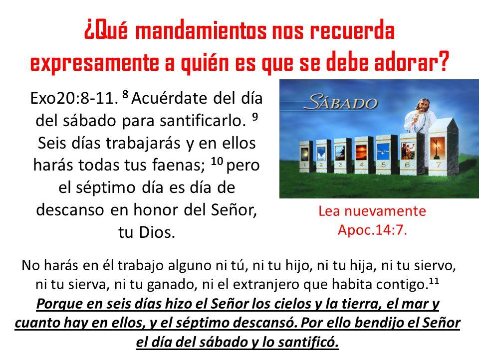 ¿Qué mandamientos nos recuerda expresamente a quién es que se debe adorar
