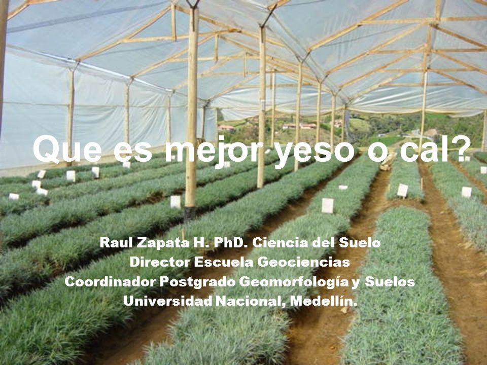 Que es mejor yeso o cal Raul Zapata H. PhD. Ciencia del Suelo