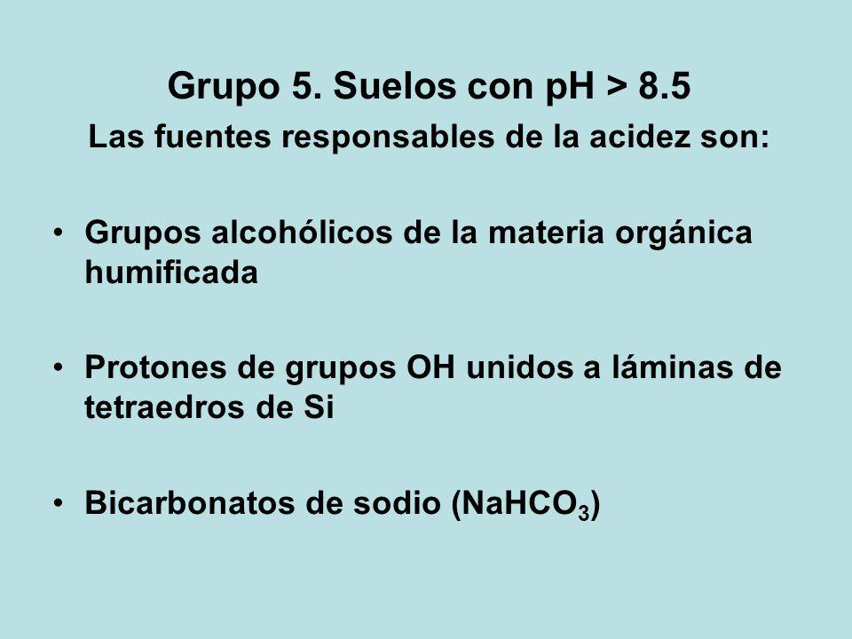 Grupo 5. Suelos con pH > 8.5