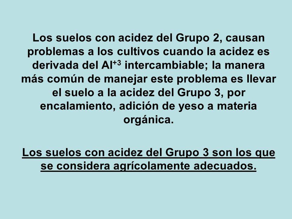 Los suelos con acidez del Grupo 2, causan problemas a los cultivos cuando la acidez es derivada del Al+3 intercambiable; la manera más común de manejar este problema es llevar el suelo a la acidez del Grupo 3, por encalamiento, adición de yeso a materia orgánica.