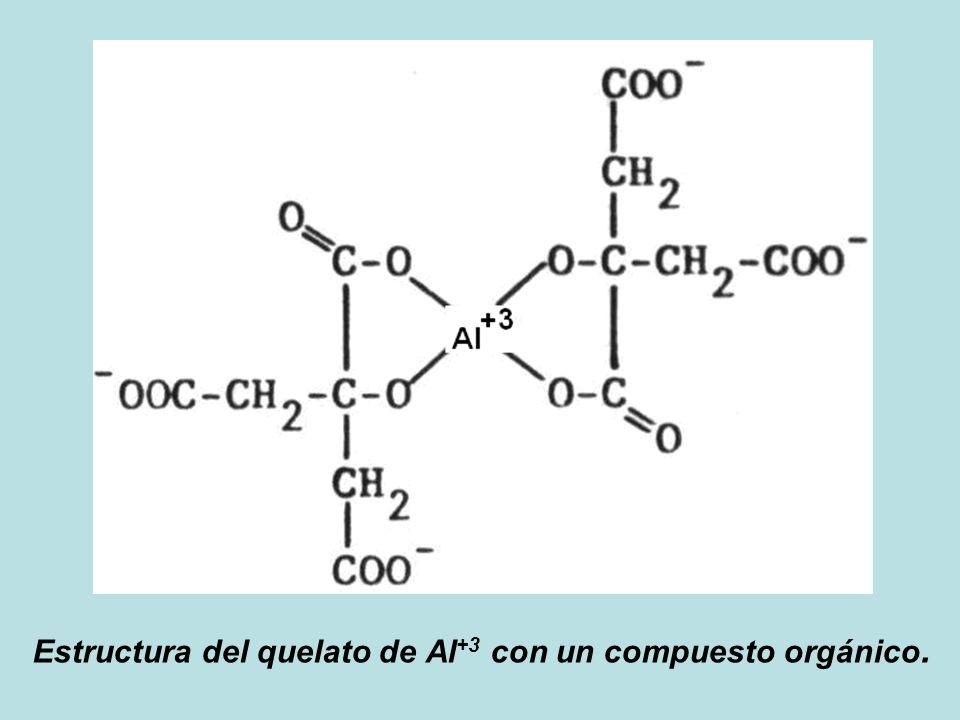 Estructura del quelato de Al+3 con un compuesto orgánico.