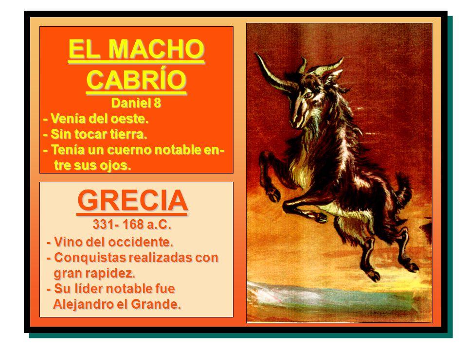 GRECIA EL MACHO CABRÍO Daniel 8 - Venía del oeste. - Sin tocar tierra.