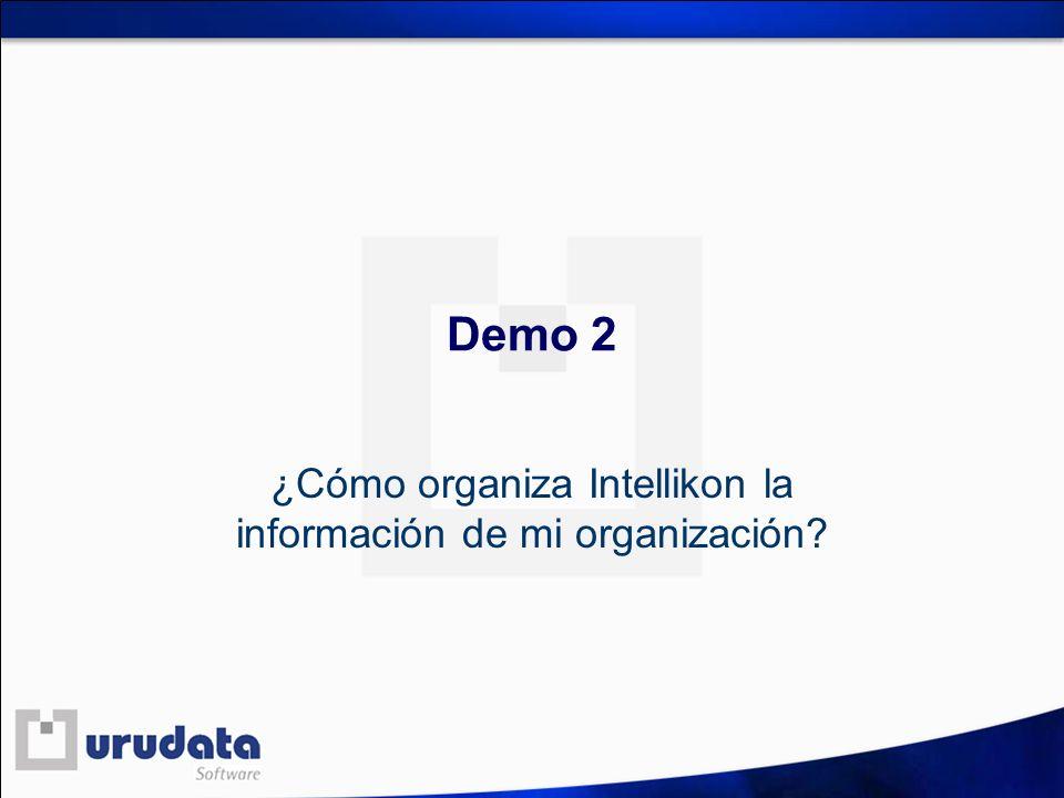 ¿Cómo organiza Intellikon la información de mi organización