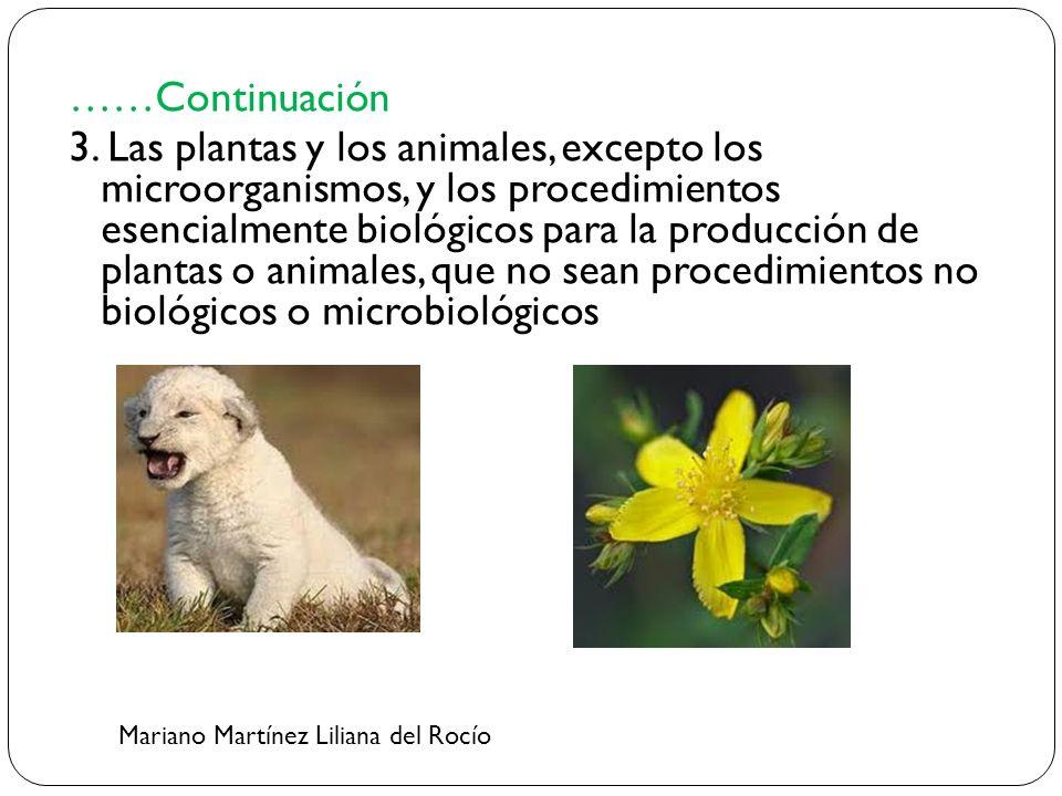 ……Continuación 3. Las plantas y los animales, excepto los microorganismos, y los procedimientos esencialmente biológicos para la producción de plantas o animales, que no sean procedimientos no biológicos o microbiológicos
