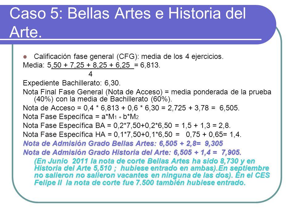 Caso 5: Bellas Artes e Historia del Arte.