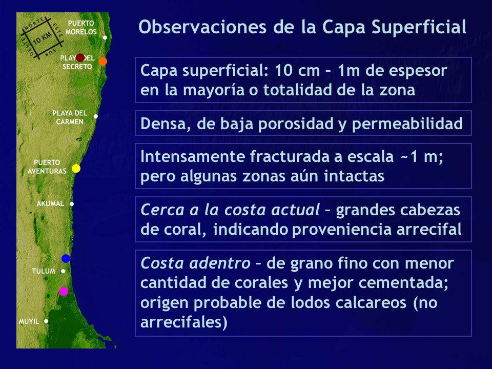 Observaciones de la Capa Superficial