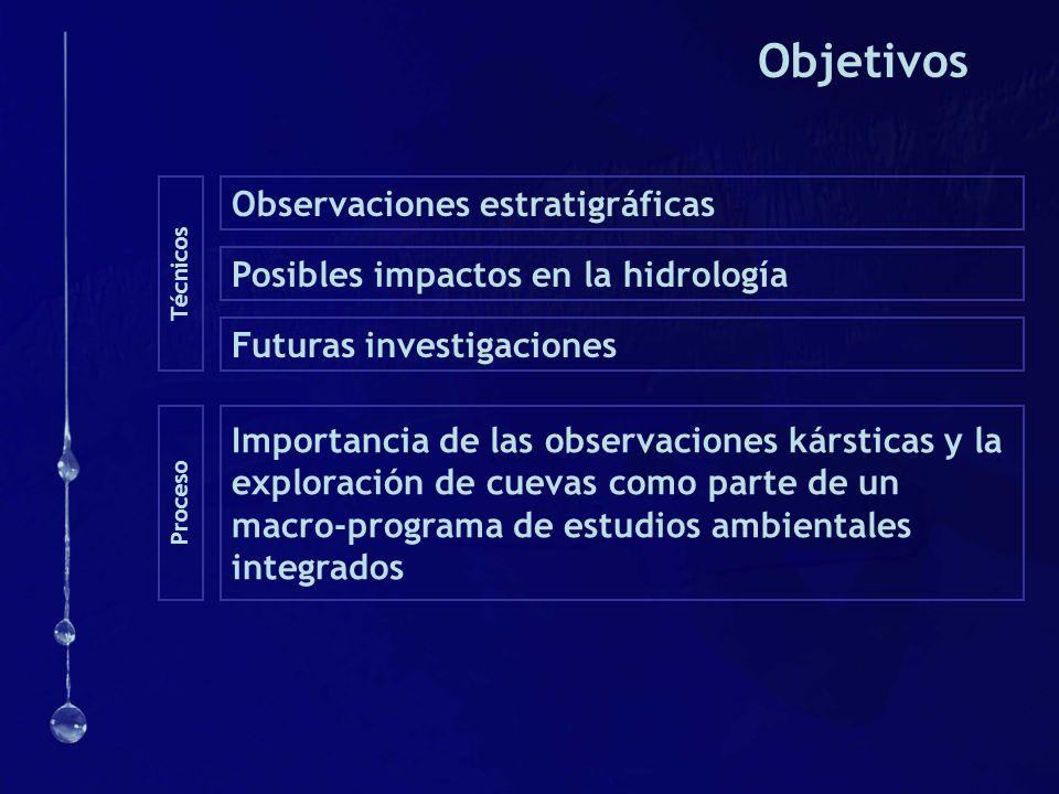 Objetivos Observaciones estratigráficas