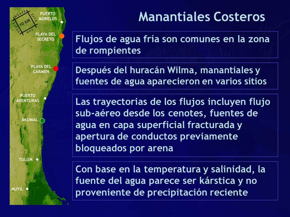 Manantiales Costeros Flujos de agua fría son comunes en la zona de rompientes.