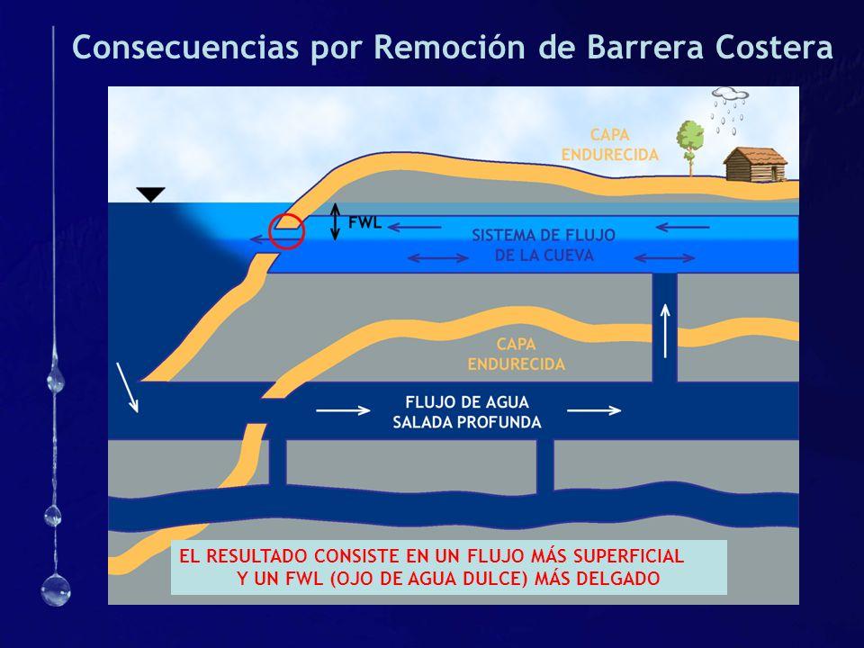 Consecuencias por Remoción de Barrera Costera