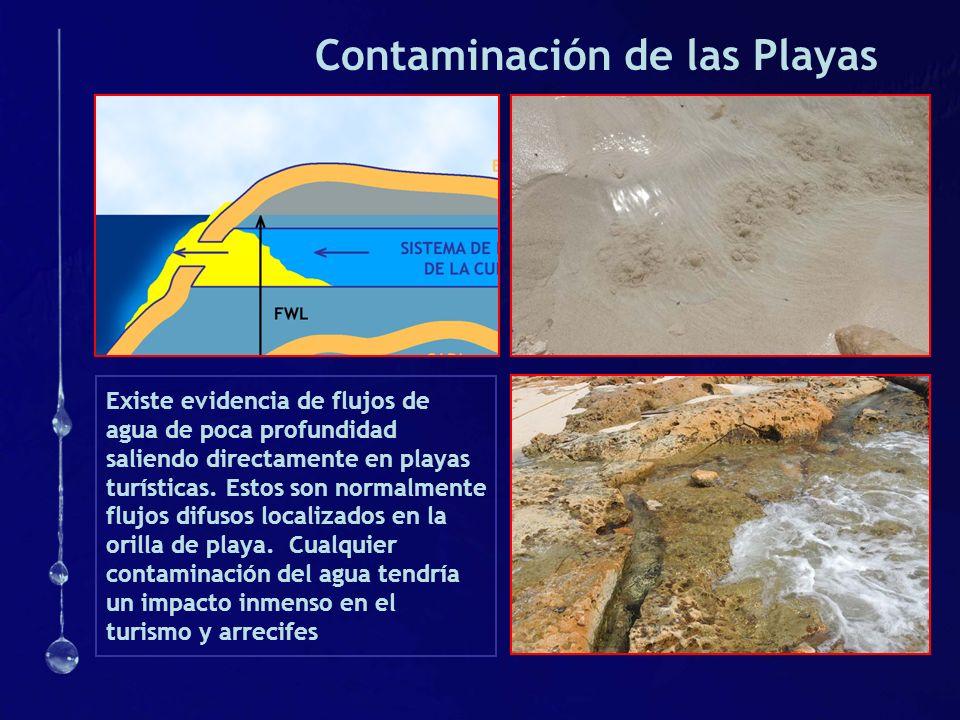 Contaminación de las Playas