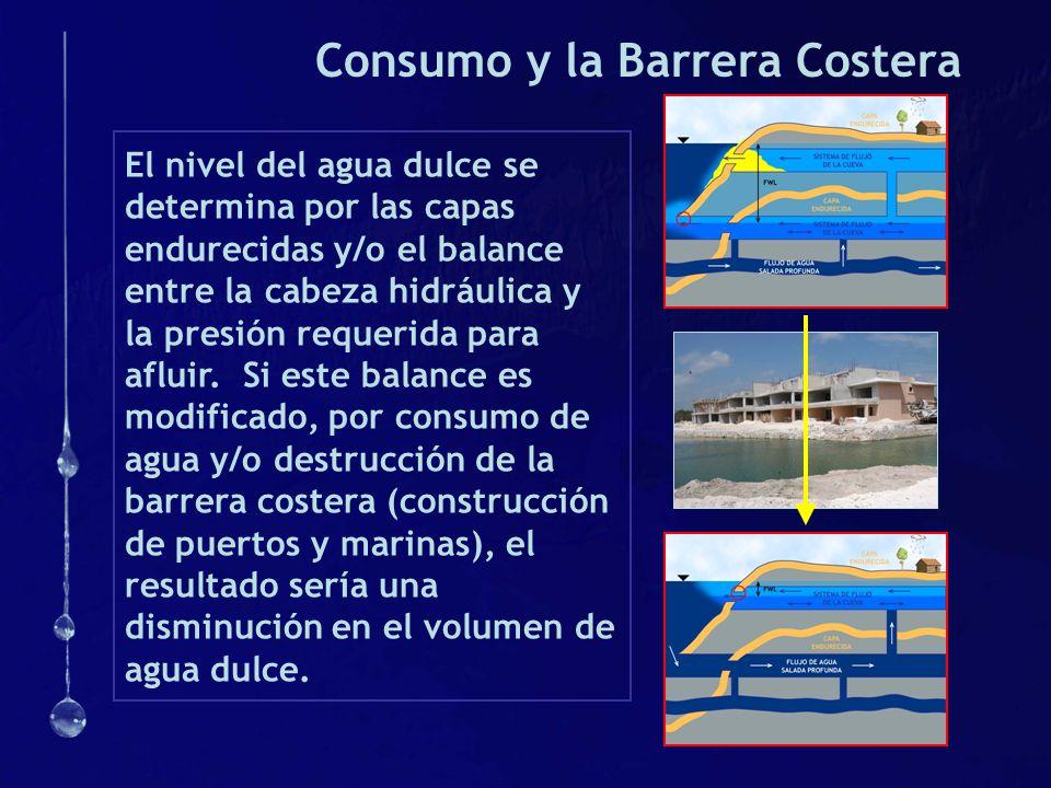 Consumo y la Barrera Costera