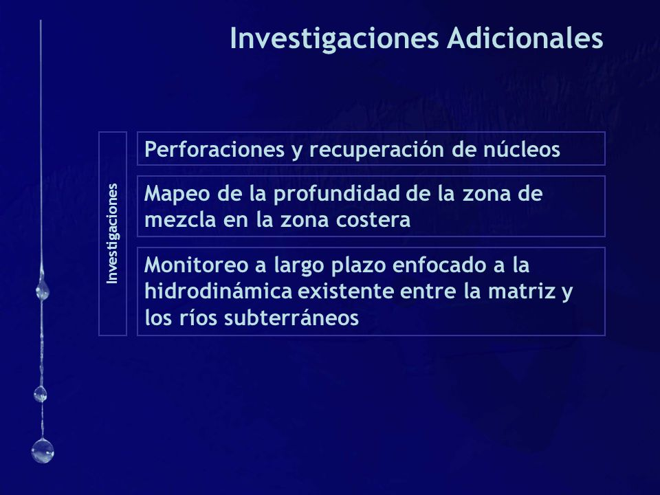 Investigaciones Adicionales