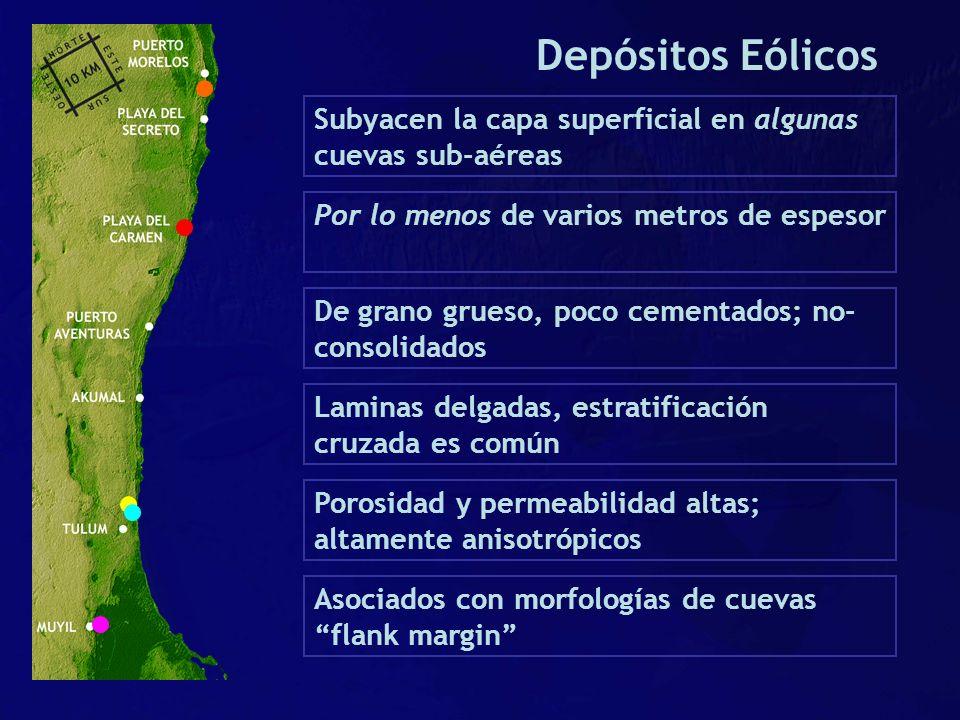 Depósitos Eólicos Subyacen la capa superficial en algunas cuevas sub-aéreas. Por lo menos de varios metros de espesor.