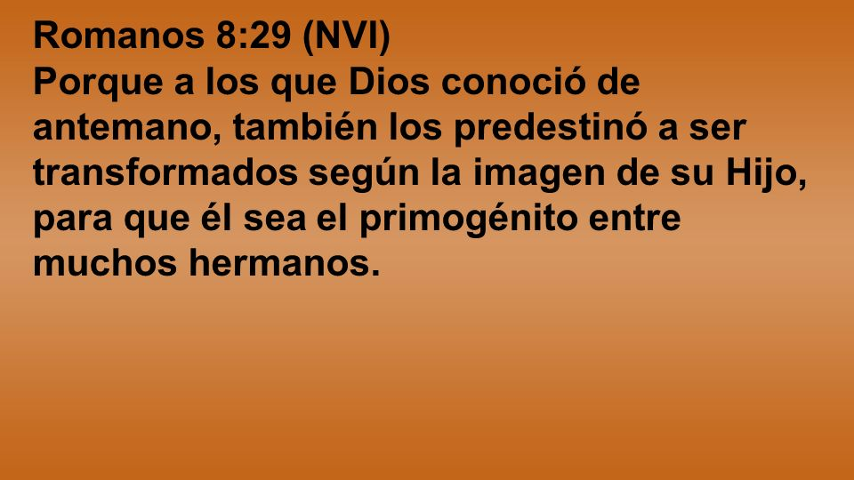 Romanos 8:29 (NVI)