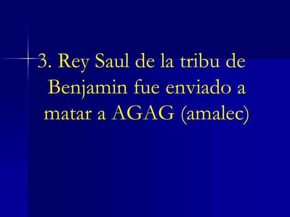 3. Rey Saul de la tribu de Benjamin fue enviado a matar a AGAG (amalec)