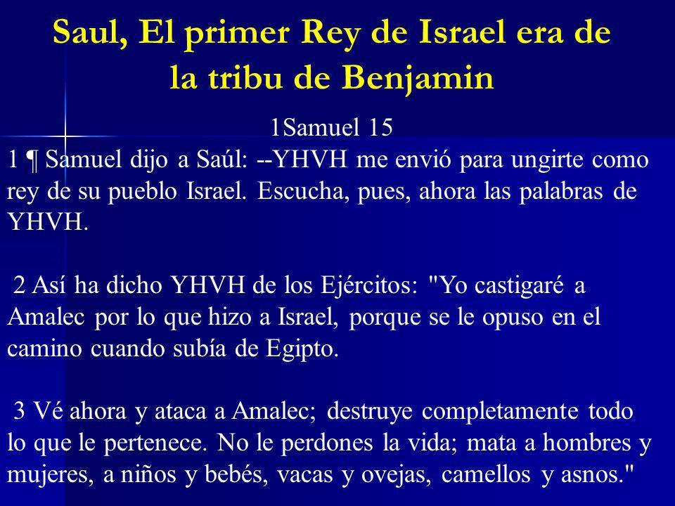 Saul, El primer Rey de Israel era de la tribu de Benjamin