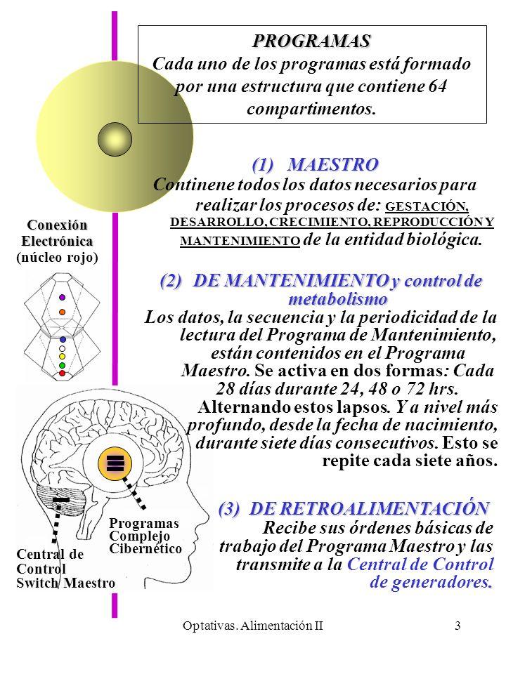 DE MANTENIMIENTO y control de metabolismo