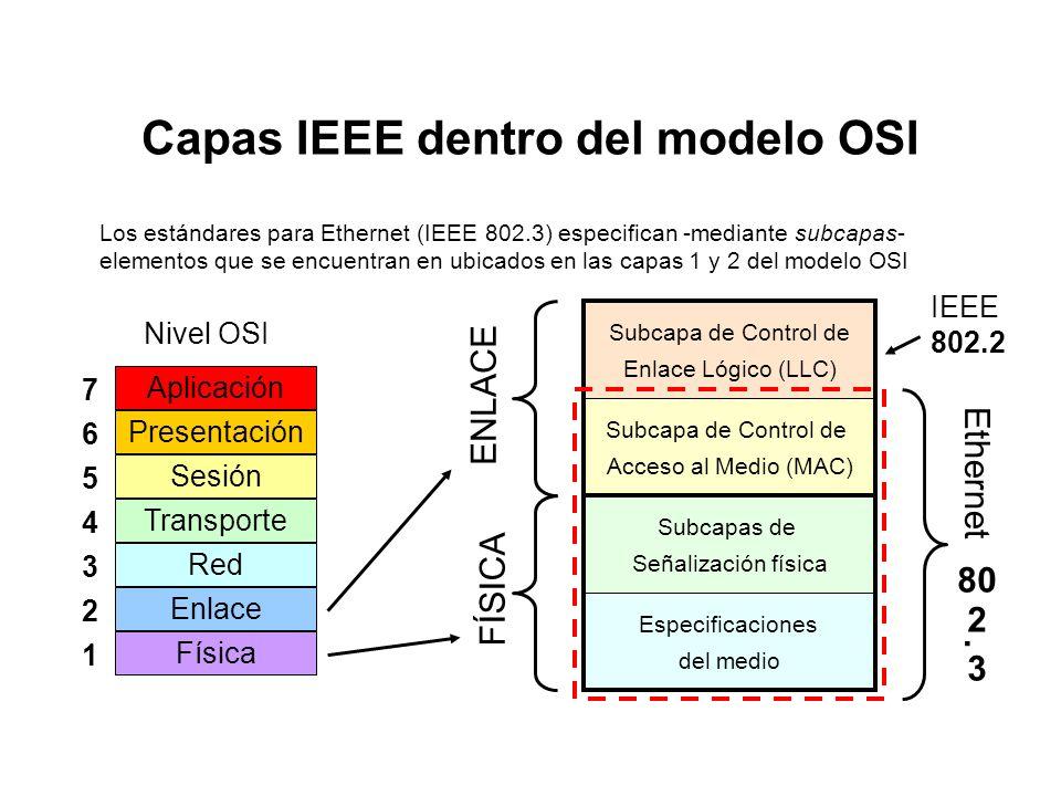 Capas IEEE dentro del modelo OSI