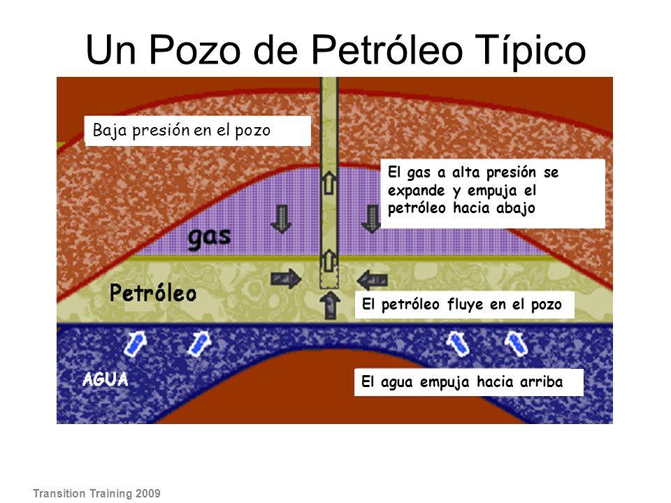 Un Pozo de Petróleo Típico