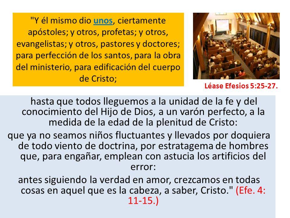 Y él mismo dio unos, ciertamente apóstoles; y otros, profetas; y otros, evangelistas; y otros, pastores y doctores; para perfección de los santos, para la obra del ministerio, para edificación del cuerpo de Cristo;