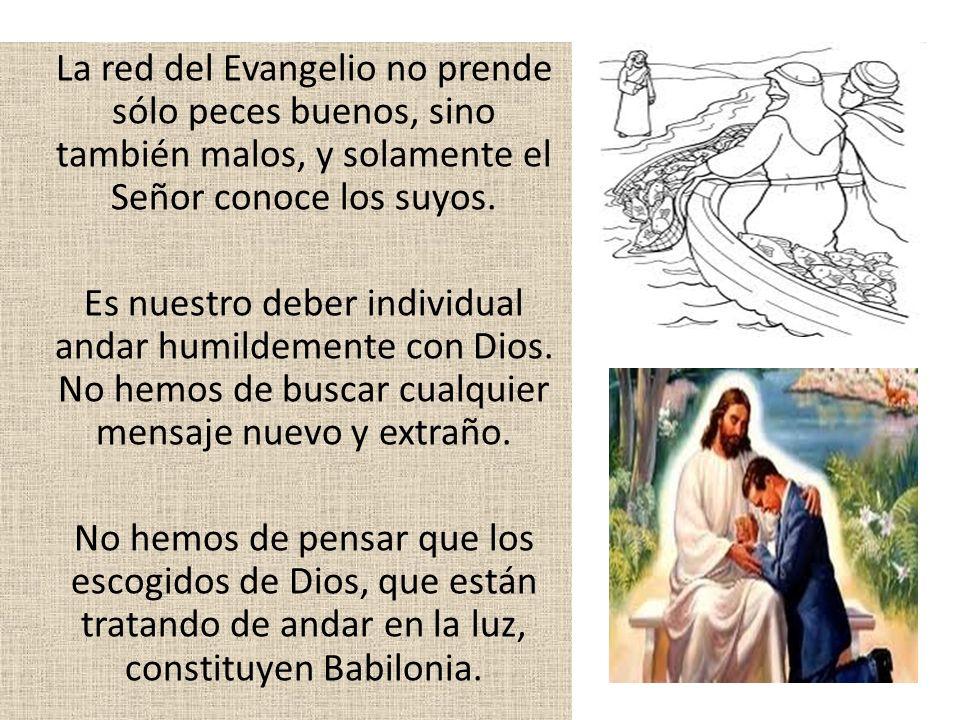 La red del Evangelio no prende sólo peces buenos, sino también malos, y solamente el Señor conoce los suyos.