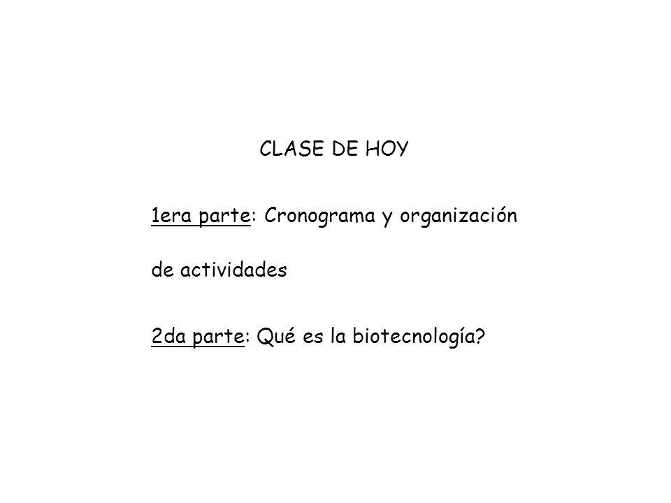 CLASE DE HOY 1era parte: Cronograma y organización de actividades.