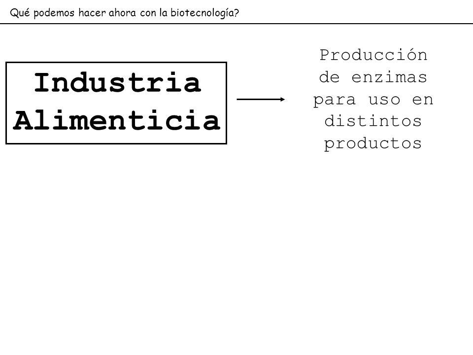 Producción de enzimas para uso en distintos productos