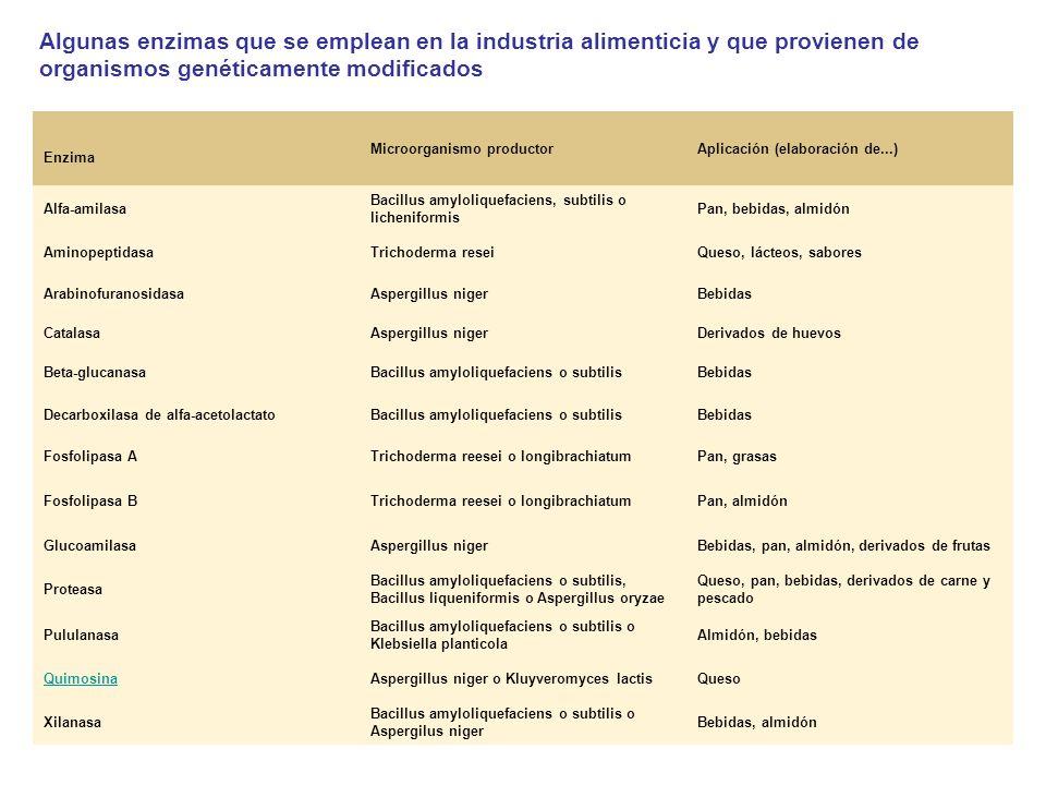 Algunas enzimas que se emplean en la industria alimenticia y que provienen de organismos genéticamente modificados