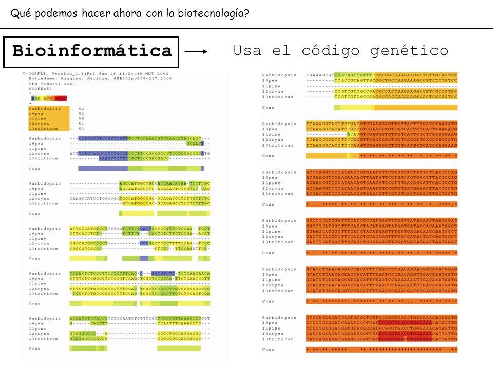Bioinformática Usa el código genético