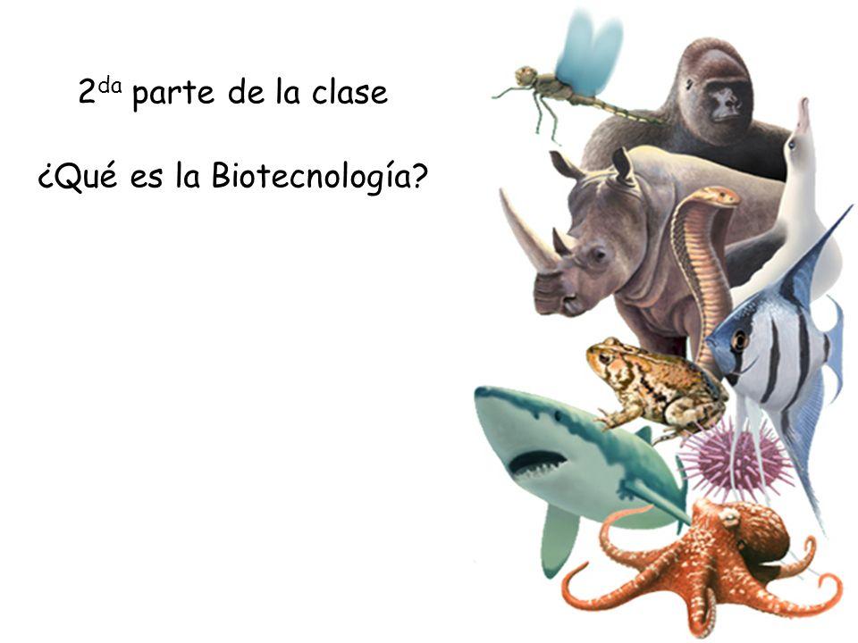 ¿Qué es la Biotecnología