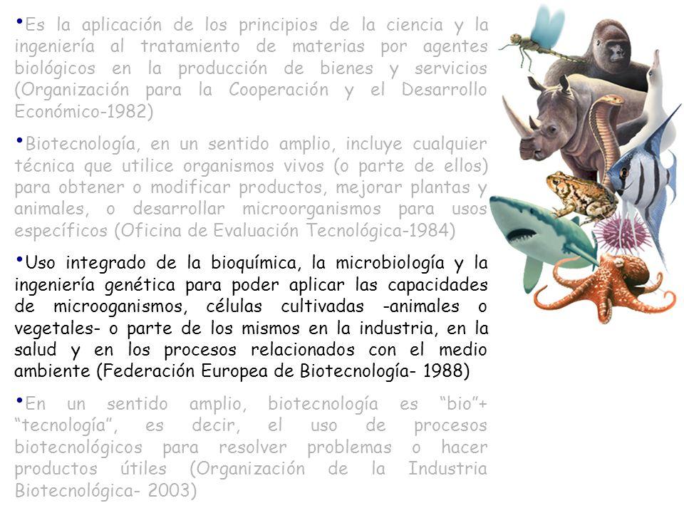 Es la aplicación de los principios de la ciencia y la ingeniería al tratamiento de materias por agentes biológicos en la producción de bienes y servicios (Organización para la Cooperación y el Desarrollo Económico-1982)