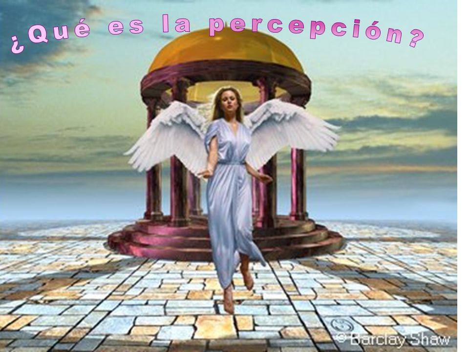 ¿Qué es la percepción