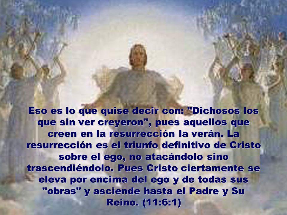 Eso es lo que quise decir con: Dichosos los que sin ver creyeron , pues aquellos que creen en la resurrección la verán.