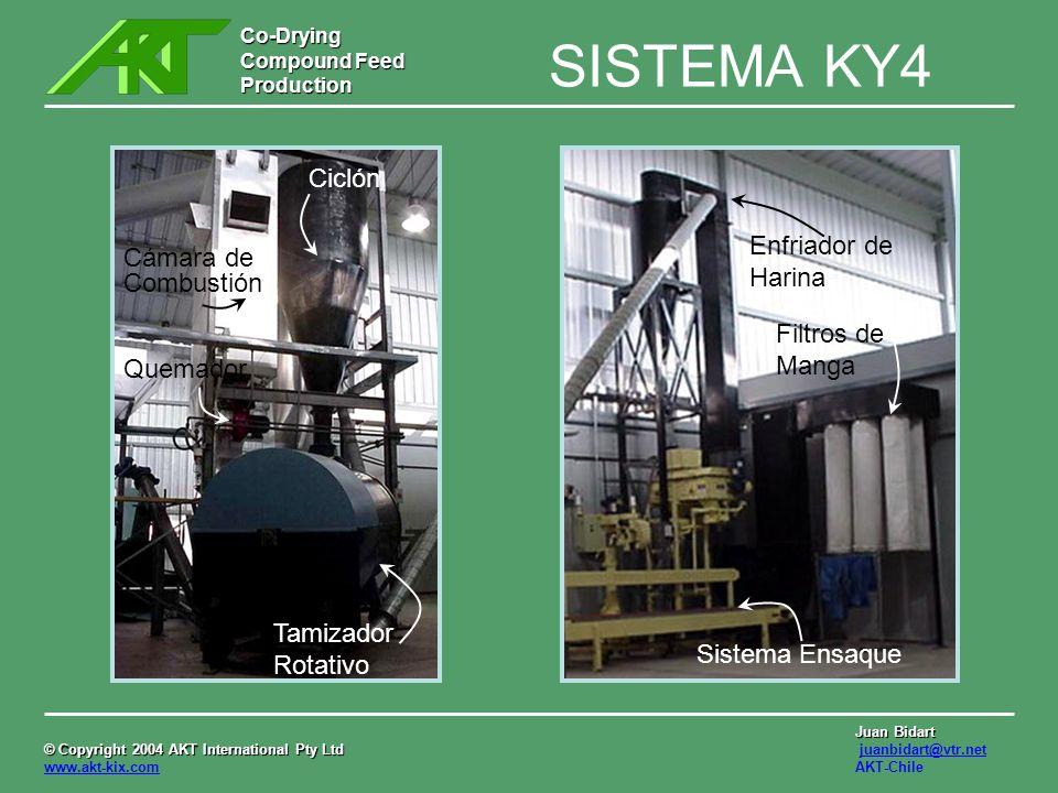 SISTEMA KY4 Ciclón Enfriador de Harina Cámara de Combustión