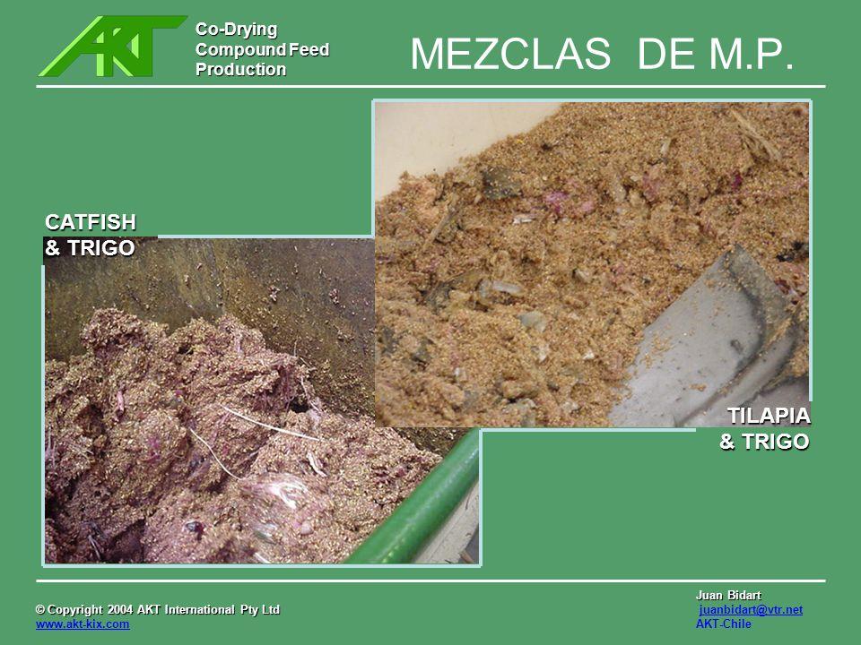 MEZCLAS DE M.P. CATFISH & TRIGO TILAPIA & TRIGO
