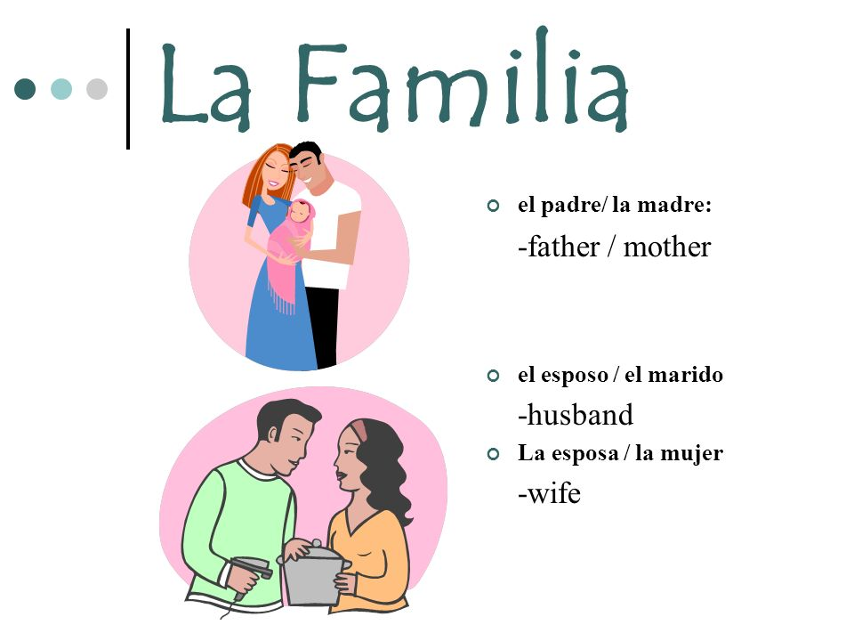La Familia -father / mother -husband -wife el padre/ la madre: