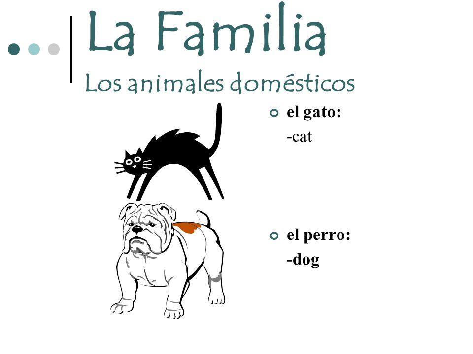 La Familia Los animales domésticos