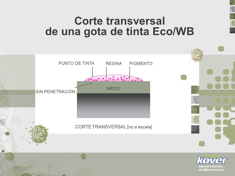 Corte transversal de una gota de tinta Eco/WB