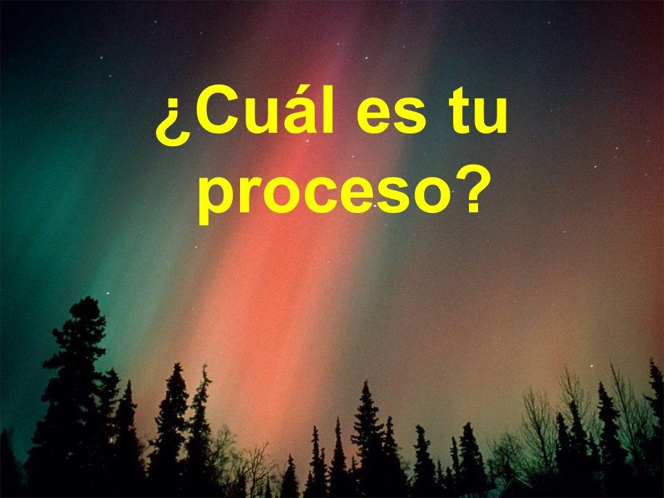 ¿Cuál es tu proceso