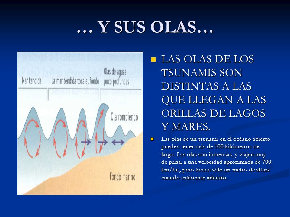 … Y SUS OLAS… LAS OLAS DE LOS TSUNAMIS SON DISTINTAS A LAS QUE LLEGAN A LAS ORILLAS DE LAGOS Y MARES.