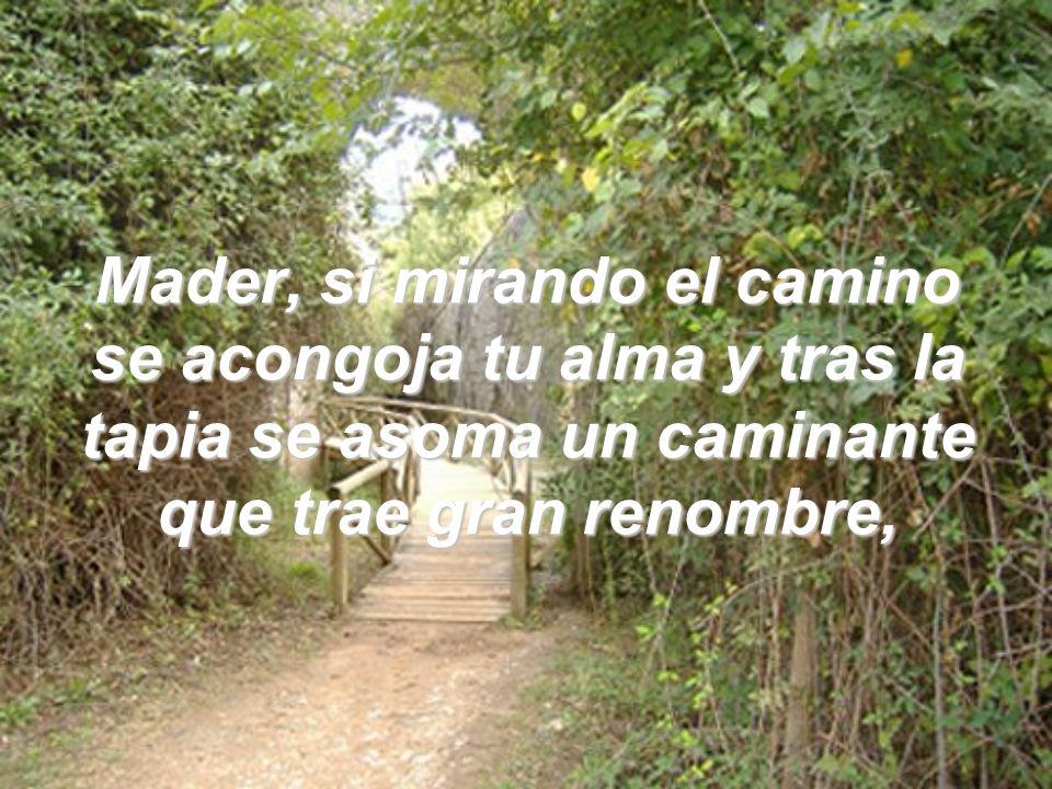 Mader, si mirando el camino se acongoja tu alma y tras la tapia se asoma un caminante que trae gran renombre,