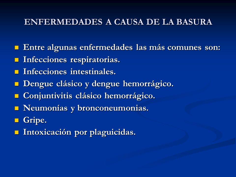 ENFERMEDADES A CAUSA DE LA BASURA