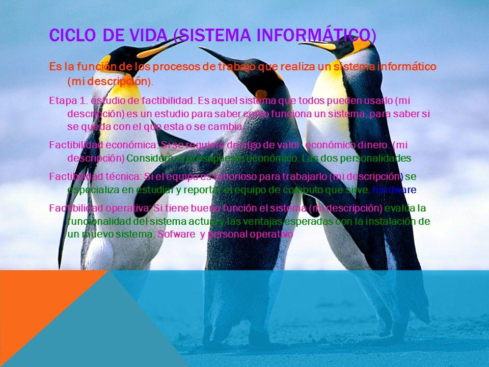 Ciclo de vida (sistema informático)