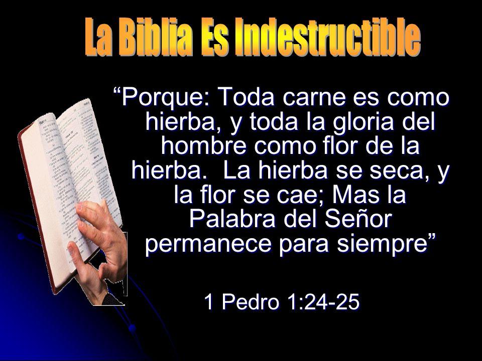 La Biblia Es Indestructible