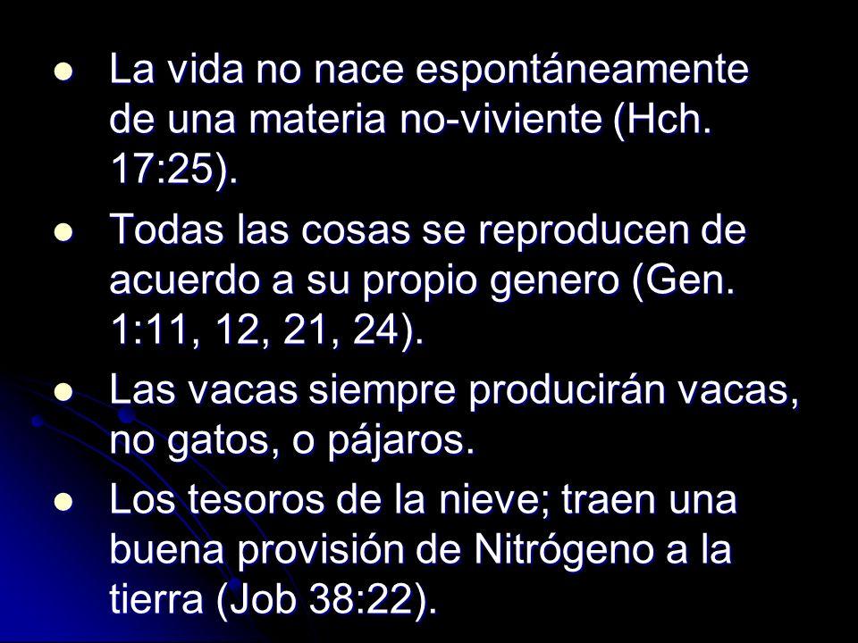 La vida no nace espontáneamente de una materia no-viviente (Hch. 17:25).